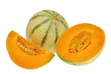 Melon Honeydew Orange 10 Benih 25 varieties of melons with pictures