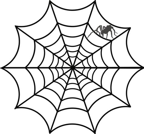Free Web Clipart Spider Web Drawing Web Design Australian Funnel Web Spider