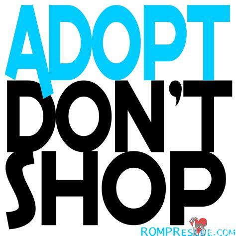 adoption chicago italian greyhound adoption romp italian greyhound rescue design bild