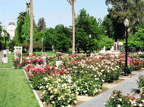 rose garden sacramento