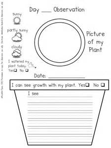 nursery daily diary template preschool plant journals template plant journal