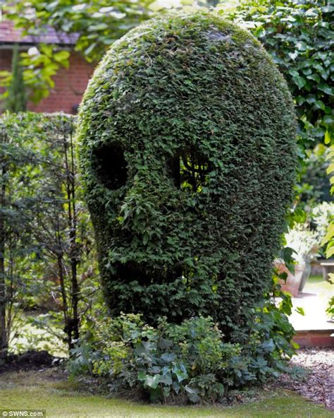 neurologist decorates welwyn garden city house by carving bushes into shape of hands and skull