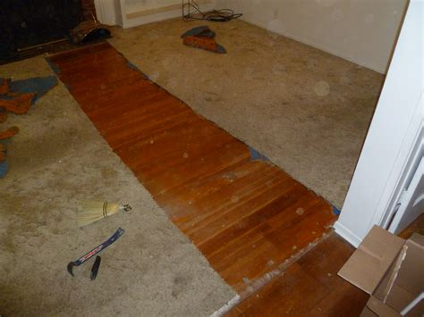 Hardwood floor refinishing. Dang cats! « Knierim dot org