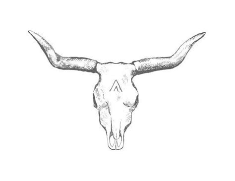 texas longhorn tattoo designs image result for longhorn bull skull