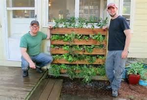 Vertical vegetable garden pallet www imgarcade com
