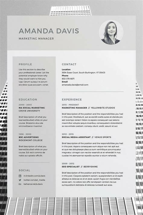 templates cv word download the 25 best professional cv template free ideas on