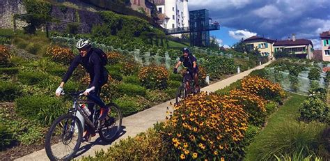 Executive Mba Switzerland by Bicycling And Networking Cjbs Insight