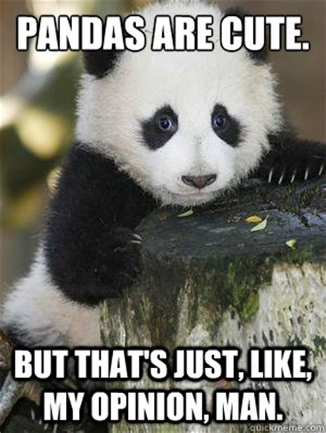 Cute Panda Memes - a lot of the posts here are bitter snide and hurtful to