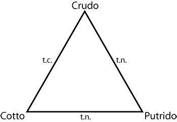 il triangolo si testo 187 il triangolo culinario di claude l 233 vi strauss 183 piccolo