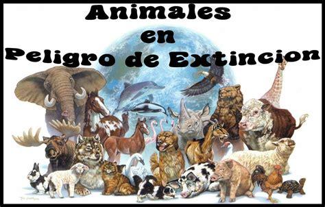 imagenes los animales en peligro de extincion animales en peligro taringa