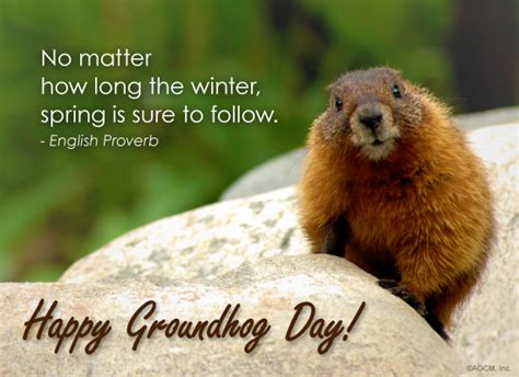 everyday is groundhog day meaning no matter how the winter is sure to follow
