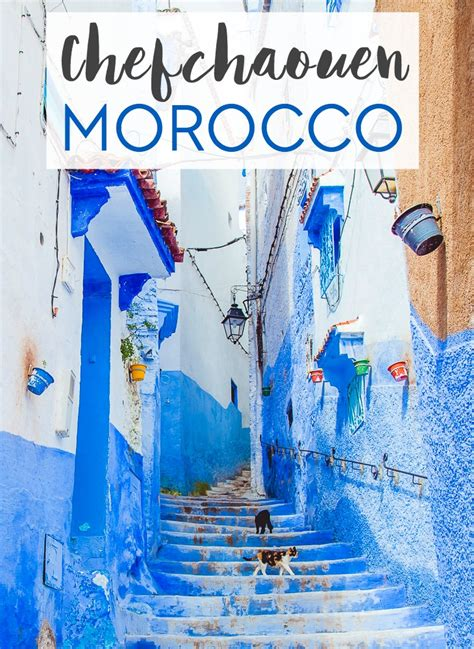 blue city morocco chair the about morocco s blue city chefchaouen my backpack