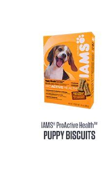 iams puppy biscuits iams proactive health weight biscuits 4 lbs cutest dogs