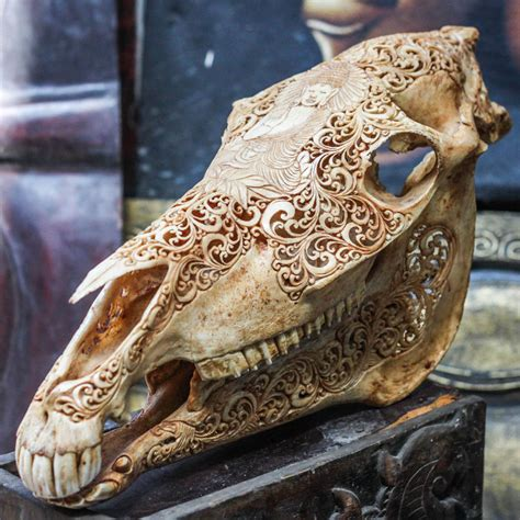 Longhorn Home Decor by Hand Carved Buddha Horse Skull Real Mule Animal Skull