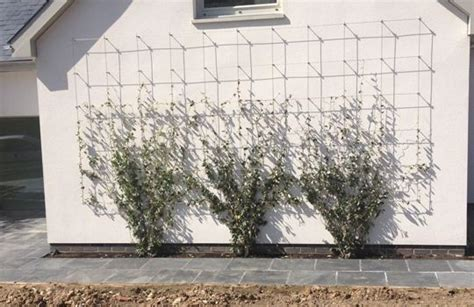 Wire Trellis System tecni 174 standard cable trellis system bib cable wire and medium