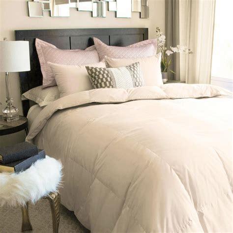 white down comforter queen nikki chu full queen white down comforter in soft clay bmi