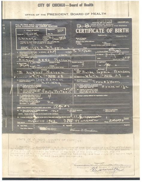 Chicago Illinois Birth Records Connie Nelson S Nelson Genealogy Birth Records Index