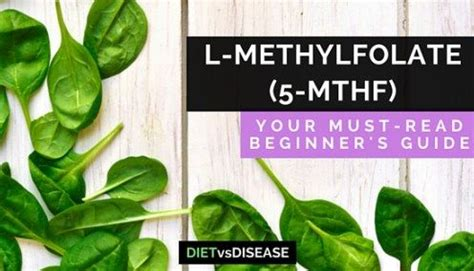 Mthfr And Heavy Metal Detox by Mthfr Mutation Symptoms And Diet What You Need To