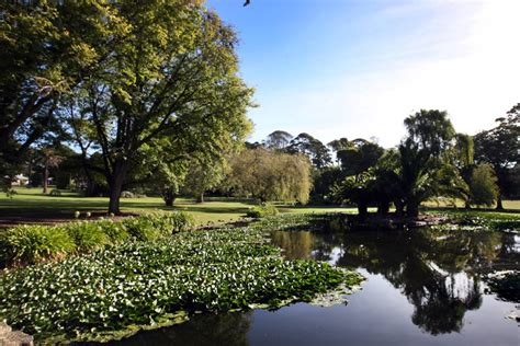 Warrnambool Botanic Gardens News Focus Warrnambool Botanic Gardens A Treasured City The Standard