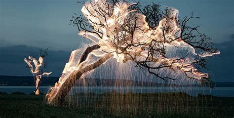 how to make raining lights in a tree amazing exposure photos make light look like cobwebs on trees