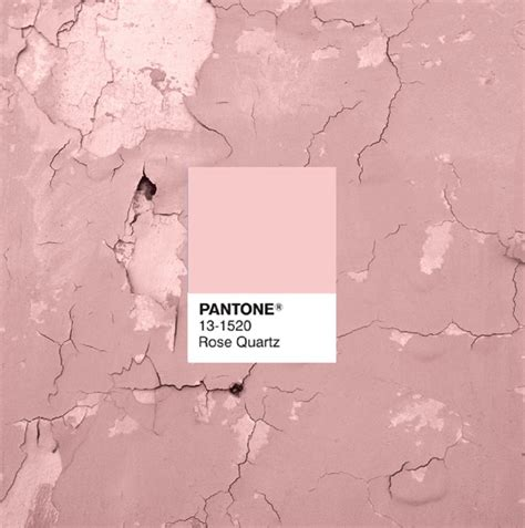 what is the color of 2016 pantone s 2016 colors of the year rose quartz and serenity