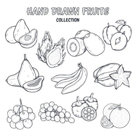 disegni da colorare fiori e frutta disegno da colorare frutta scaricare vettori gratis