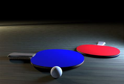 ping pong ping pong paddle by myrrdin01 3docean