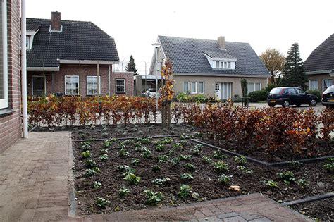 beukenhaag compleet voor en achtertuin ruchpen concept garden