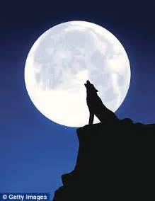 best full moon tattoo effects on mood full tattoo does the moon really affect our mood or is it just a myth
