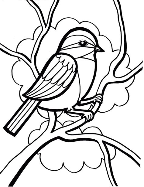 chickadee bird coloring page chickadee bird coloring pages clipart best