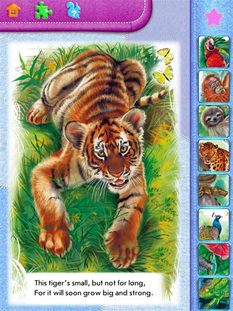 animal kingdom smart kids logic games  apps  android apk