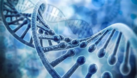 biologia test ingresso biologia e biotecnologie 2018 i corsi ad accesso libero
