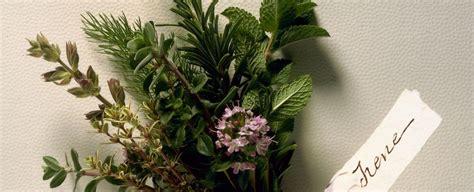 mazzi di fiori per san valentino per san valentino un bouquet aromatico sale pepe