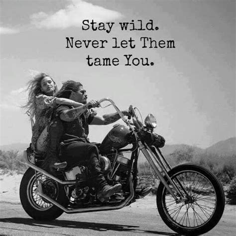 Bmw Motorrad Insurance Quote by 25 Best Harley Davidson Quotes On Motorcycle