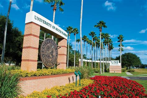 Usf Mba International Student by Of South Florida Into Pathway Florida Usa