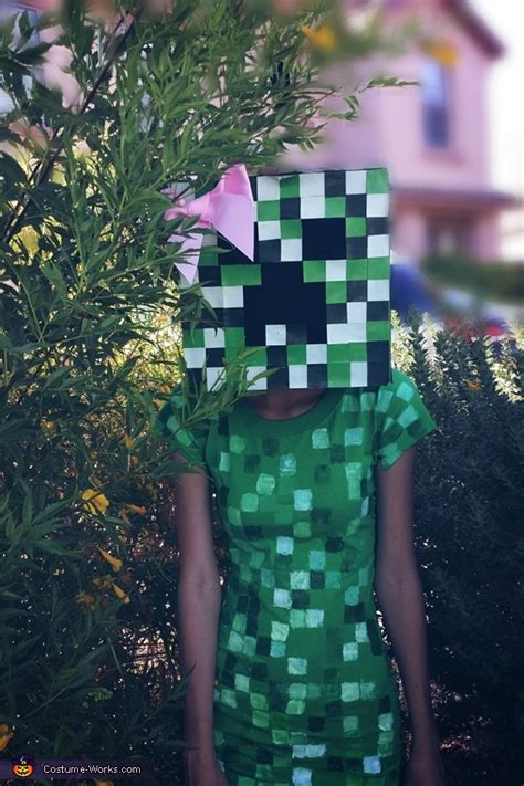 minecraft steve  creeper couple costume photo