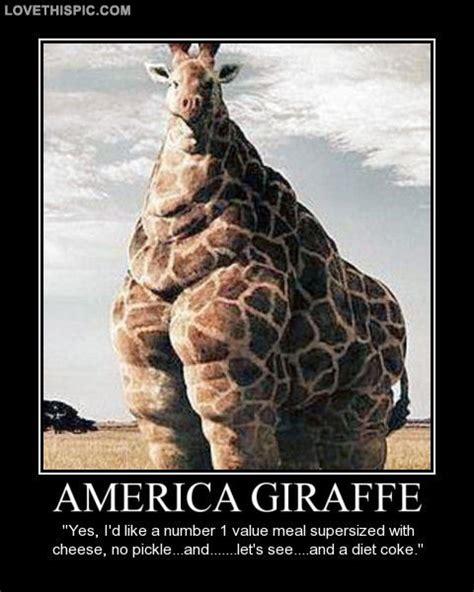 Funny Giraffe Memes - giraffe coffee meme memes