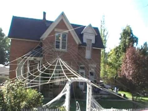 bid web cool spider web decoration