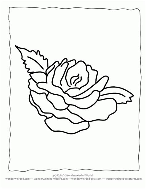 coloring pages of flowers for s day realistic flower coloring home