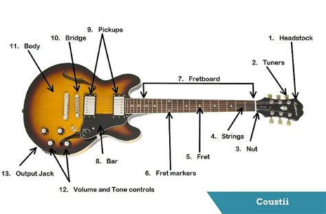 electric guitar diagram guitar s anatomy parts of an electric guitar coustii