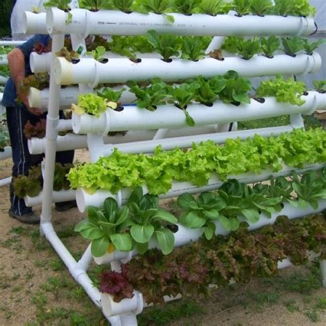 Vertical Vegetable Garden Kits 120 Best Images About Gardening Hydroponics On