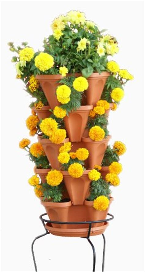 stacky  tier strawberry planter pot  pots compare