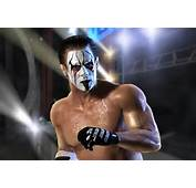 Sting TNA Wallpapers  Photo Image