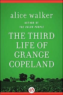 the color purple by alice walker 9781453223970 nook the third life of grange copeland by alice walker graphic
