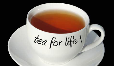 tea pictures best teas for sunburn tea majesty
