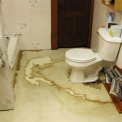 is mold in the bathroom dangerous is bathroom mold toxic 28 images the most effective