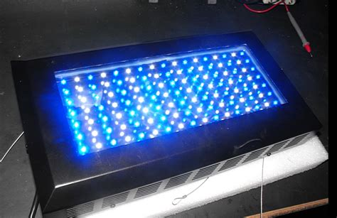 what you should before purchasing an led aquarium