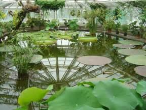 garten berlin botanical garden berlin germany travel