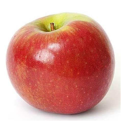 Juicer Alper apple juice concentrate products turkey apple juice