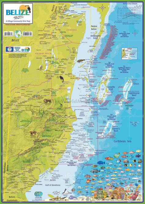tourist map of belize travel map of belize